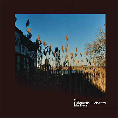 http://arielsgroove.files.wordpress.com/2007/09/ma_fleur_the_cinematic_orchestra.jpg